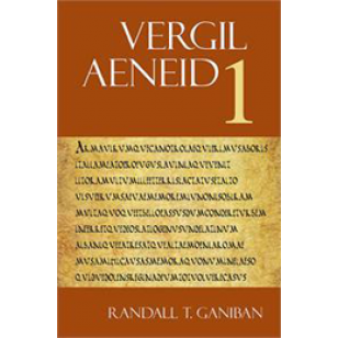 aeneid paper In any paper prepared for submission in a classics, latin, or greek  example, to  cite the first line of vergil's aeneid, you would write 'verg aen.